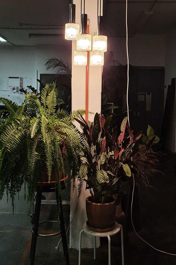 Pflanzen mood in der Craftspace Eventlocation